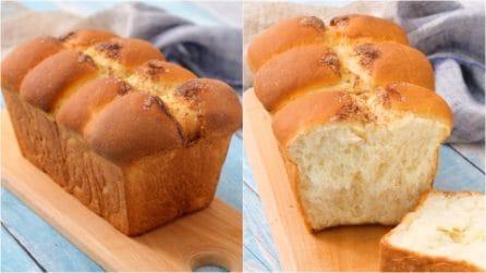 Plumcake brioche: soffice, leggero e saporito!