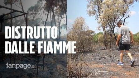 """Incendi in Sicilia, brucia il bosco di Santo Pietro, devastazione senza precedenti: """"Un inferno"""""""