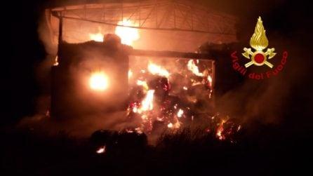 Incendio in un capannone di Montecalvo Irpino: fiamme alte e densa colonna di fumo nero