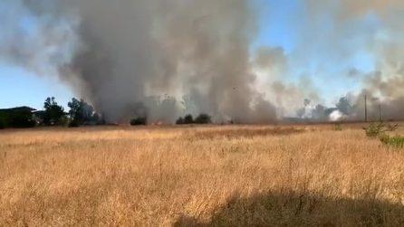 Vasto incendio a Tor di Valle: bruciano chilometri di sterpaglie