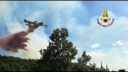 Vasto rogo in provincia di Potenza, il bosco a ridosso del centro abitato va a fuoco