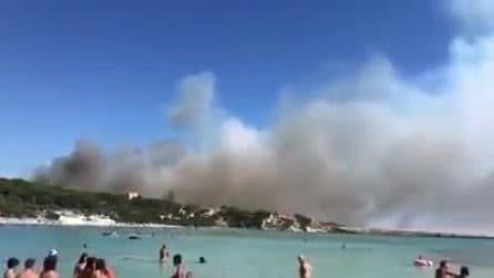 Taranto, vasto incendio sulla litoranea: paura tra i bagnanti