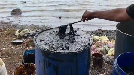 Disastro alle Mauritius, i volontari recuperano tonnellate di petrolio dal mare