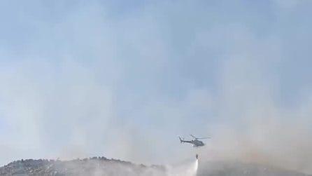 Incendi a L'Aquila, fiamme devastano 700 ettari di zone boschive: chiesto lo stato di emergenza