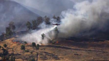Usa, vasto incendio in California: 8000 persone sgomberate