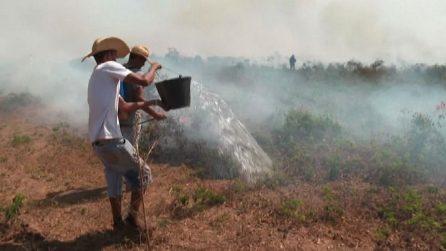 Secchi e getti d'acqua per spegnere gli incendi in Amazzonia