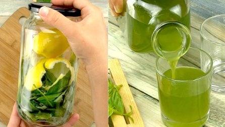 Liquore al basilico: come farlo in casa in pochi passi!