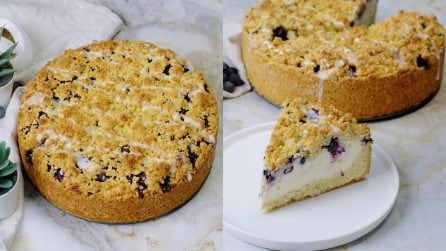 Blueberry cheesecake crumb: you need to try this!