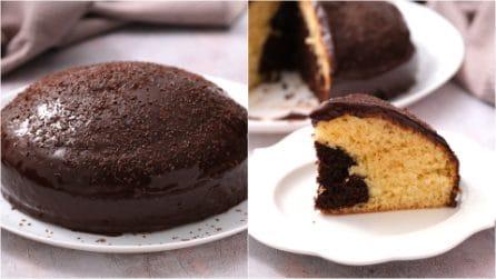 Torta bicolore: soffice e alta tutta da gustare!