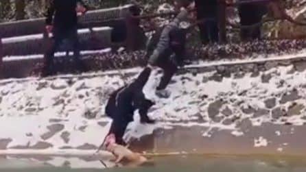 Cane randagio cade nel lago ghiacciato: lo salvano facendo una catena umana
