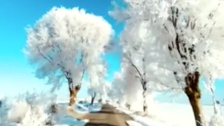 Come in Frozen: lo spettacolo ghiacciato in Spagna dopo le temperature scese sotto lo zero