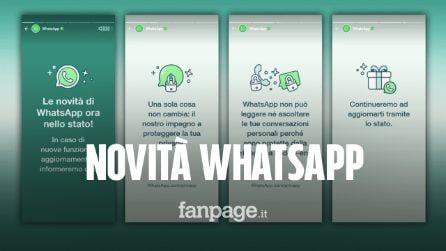 Novità WhatsApp, ecco cosa sono le storie sulla privacy presenti nell'app