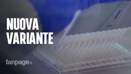 """Nuova variante Covid scoperta a Napoli: """"Un centinaio di casi al mondo, non si è diffusa in città"""""""