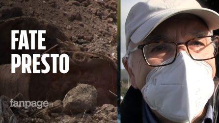 """Terra dei fuochi, studio ISS sul nesso rifiuti/malattie: """"Ora bisogna agire, fate presto"""""""