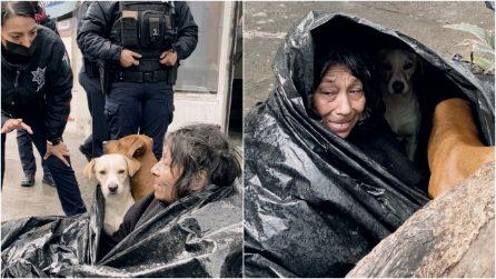 Donna senzatetto rifiuta un posto sicuro pur di non lasciare i suoi cani da soli per strada