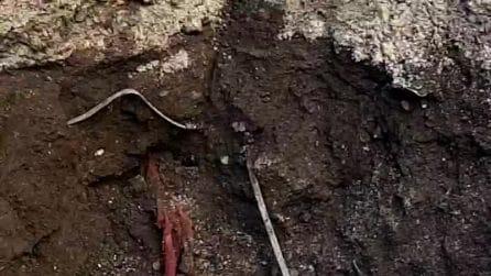Acerra: da una voragine spuntano rifiuti interrati in via Arafat
