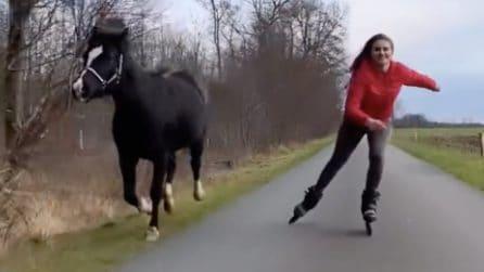 La complicità e amicizia tra questa ragazza e il suo cavallo è emozionante