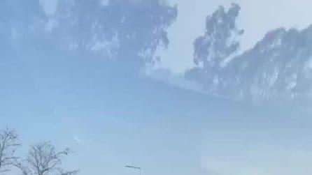 Roma-Fiumicino, auto contromano in autostrada: le immagini