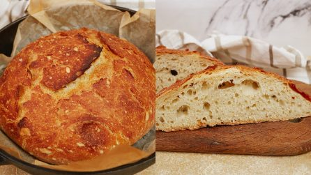 No-knead 4 ingredients bread: the scent will make your mouth water!