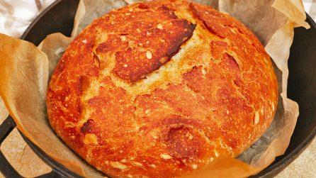 Pane pronto con soli 4 ingredienti: profumato, morbido e buono!