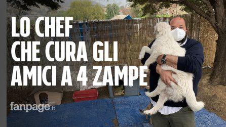 """Vincenzo, lo chef animalista che ha salvato un cane da un dirupo: """"Adesso vive con me"""""""