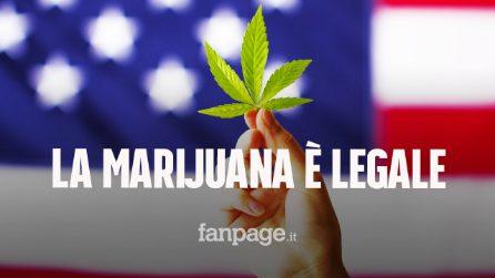 """New York legalizza l'uso di marijuana a scopo ricreativo: """"Farà crescere l'economia"""""""