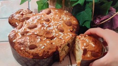 Colomba fatta in casa: la ricetta per averla soffice e gustosa