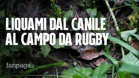 """Roma, i liquami del canile comunale sversati nell'area circostante: """"Il campo da rugby è invaso"""""""