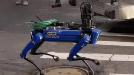 Come in Black Mirror: a New York la polizia sta usando cani robot per le strade