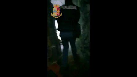 Cane poliziotto trova 1kg di coca in un'escape room a Talenti: arrestato 32enne