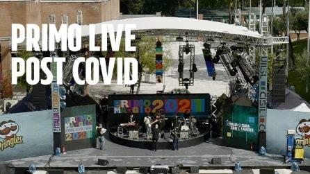 """Il Concertone del Primo Maggio torna live, Renato Zero: """"Il Governo garantisca protezione e tutela"""""""