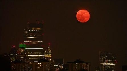 Lo spettacolo della Superluna rosa