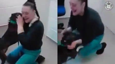 Il cane è felicissimo di rivedere la sua padrona, lei scoppia in lacrime