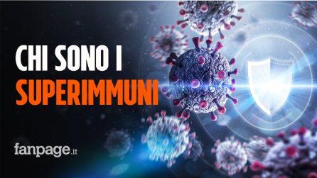 Chi sono i superimmuni che hanno il doppio degli anticorpi contro il coronavirus