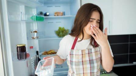 Come eliminare i cattivi odori dal frigo con un deodorante fai da te