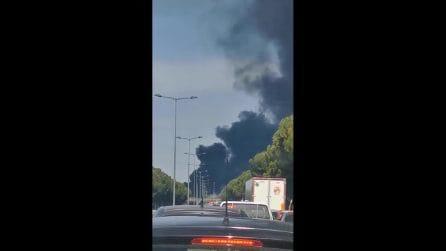 Incendio Palermo, fiamme nel quartiere Brancaccio: colonna di fumo visibile da tutta la città