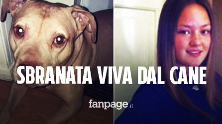 Regala un cane alla sorella malata: Keira muore a 21 anni sbranata viva