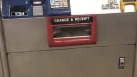 Un grosso topo intrappolato nella biglietteria automatica della metropolitana