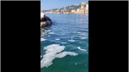Schiume e liquami a Posillipo, il mare di Napoli inquinato dagli scarichi illegali