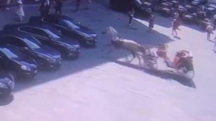 Cavallo imbizzarrito travolge l'auto del ministro Lamorgese: attimi di grande paura a Firenze