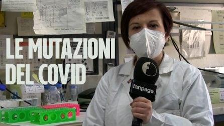 Covid, ricercatori campani scoprono 48 mutazioni del virus tra Napoli e Caserta