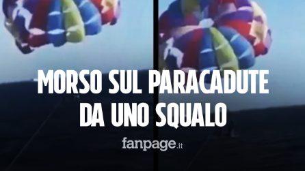 Squalo strappa un pezzo di piede al turista sul paracadute: la scena da incubo