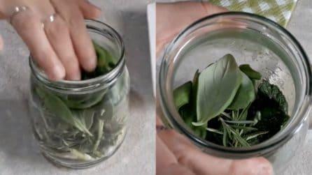 Erbe aromatiche in vasetto: il metodo di conservazione utile