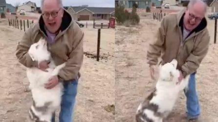 Cane sordo e cieco riconosce immediatamente il nonno dopo un anno di separazione