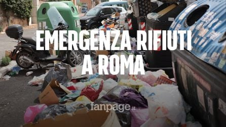 """Roma sommersa dall'immondizia, residenti esasperati: """"Viviamo tra cattivi odori, topi e gabbiani"""""""