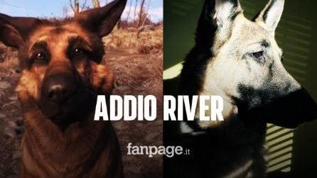 Fallout 4, addio River il cane che ha ispirato la creazione di Dogmeat