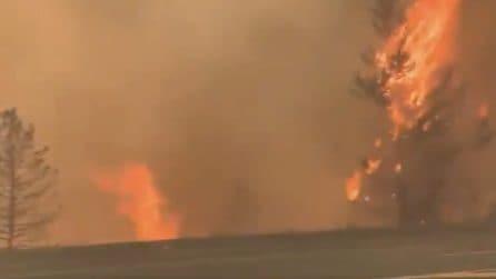 Caldo record in Canada, il termometro sfiora i 50 gradi: le fiamme arrivano fino in strada