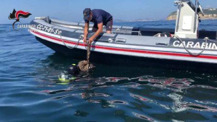 Reti ed esplosivi per pescare illegalmente alla Gaiola: altri 5 denunciati dai carabinieri