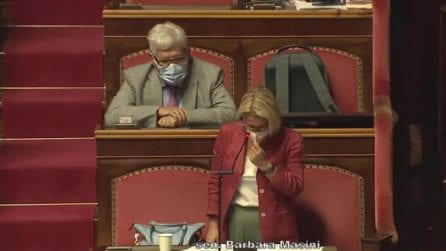 """Ddl Zan, senatrice Masini commossa in Senato: """"Quando capì, mia madre disse che aveva paura per me"""""""