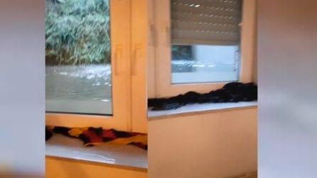 """""""Cosa sta accadendo nel mio appartamento"""", acqua all'altezza delle finestre: la testimonianza dalla Germania"""